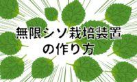 【無限に採れる】自作シソ水耕栽培装置の作り方@予算4,000円