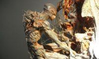 【シン・ゴジラ】ラスト尻尾の正体は何?実物を特撮のDNA展で見てきた。