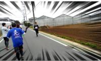 【201603ブログ運営報告】再び1万PVライン目前へ。マラソンレポはよく読まれる!書くの大変だけど(笑